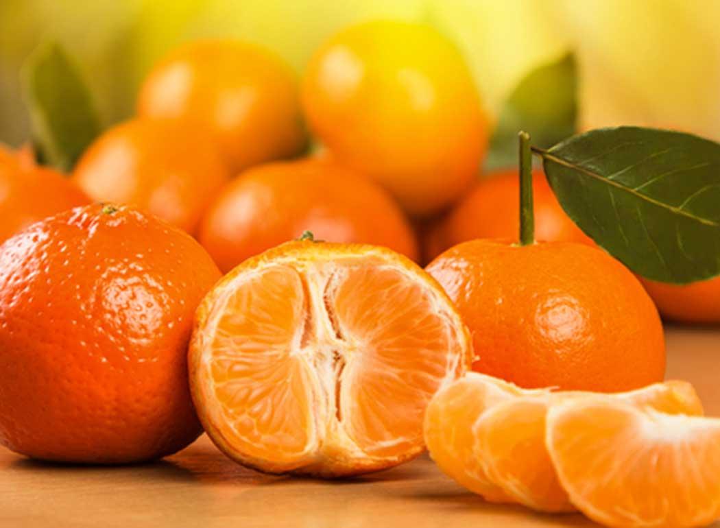 clementine-banner-agricola-lusia.jpg