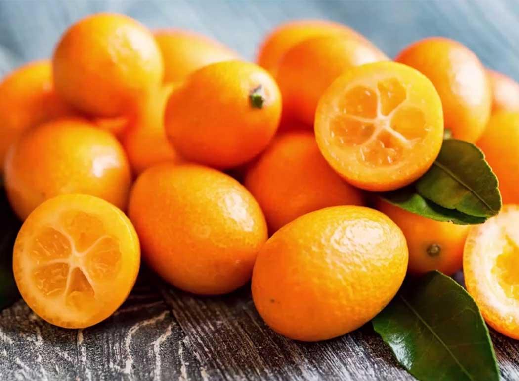 kumquat-banner-agricola-lusia.jpg