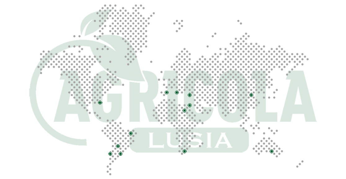 mappa_nel_mondo_agricola_lusia-new.png